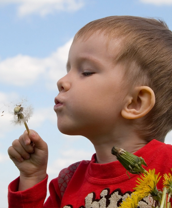Photo of Child Blowing Dandelion